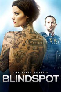 Blindspot: Temporada 1