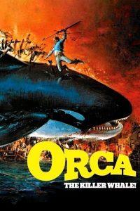 Orca, la ballena asesina