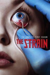 The Strain: Temporada 1